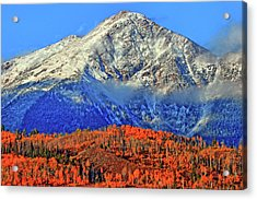 Acrylic Print featuring the photograph Closing In On Fall by Scott Mahon