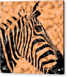Acrylic Print featuring the digital art Cloud Face Zebra by Bartz Johnson