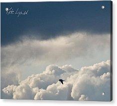 Cloud Flyer Acrylic Print