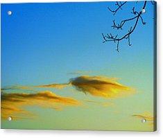 Cloud Heron Acrylic Print