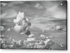 Acrylic Print featuring the photograph Cloud Study by Tom Druin