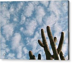 Cloud Watchers 2 Acrylic Print