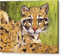Acrylic Print featuring the painting Clouded Cat by Jamie Frier