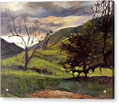 Clouds And Cattle Acrylic Print