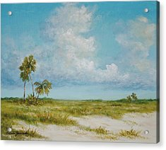 Clouds And Palms By Alan Zawacki Acrylic Print