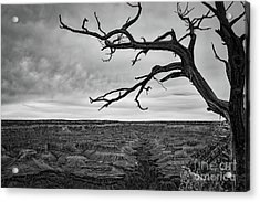 Clouds And The Canyon Acrylic Print