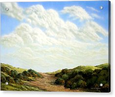 Clouds Of Spring Acrylic Print by Frank Wilson