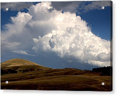 Cloudy  Day Acrylic Print by Svetlana Peric