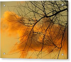 Cloudy Silhouette Acrylic Print by Dottie Dees