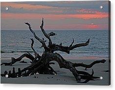 Cloudy Sunrise On Jekyll Island's Driftwood Beach Acrylic Print by Bruce Gourley