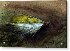 Clouser Minnow Acrylic Print by Sean Seal