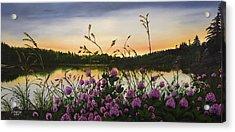 Clover Sunrise  Acrylic Print