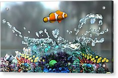 Clown Fish Collection Acrylic Print by Marvin Blaine