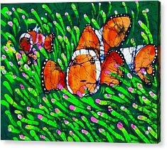 Clownfish II Acrylic Print