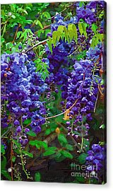 Acrylic Print featuring the photograph Clusters Of Wisteria by Donna Bentley