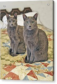 Clyde And Bonnie Acrylic Print by James Steele
