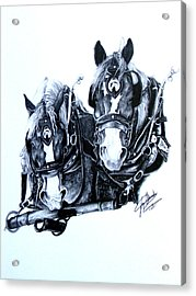 Co Workers Acrylic Print by Paper Horses Jacquelynn Adamek