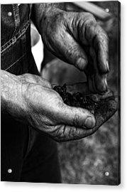 Coal Hands Acrylic Print by Brian Mollenkopf