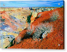 Coal Mine Canyon Acrylic Print