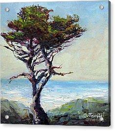 Coast Cypress Acrylic Print