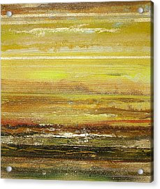 Coast Series Yellow Am9 Acrylic Print by Mike   Bell