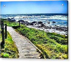 Coast Trail At Pebble Beach Acrylic Print by Kathy Tarochione