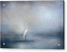 Coastal Egret Acrylic Print