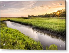 Coastal Florida Landscape - Late Afternoon On The Marsh  Acrylic Print by Bill Swindaman