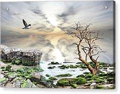 Coastal Landscape  Acrylic Print by Angel Jesus De la Fuente