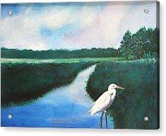 Coastal Wetlands Acrylic Print