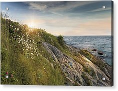 Coastline Newport Acrylic Print