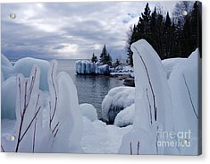 Coated With Ice Acrylic Print