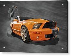 Cobra Power - Shelby Gt500 Mustang Acrylic Print by Gill Billington