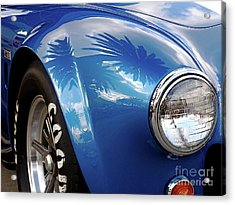 Cobra Under The Palms Acrylic Print