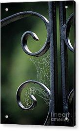 Cobwebs On Gate Acrylic Print