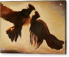 Cock Fight Acrylic Print by James LeGros