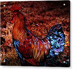 Cock Rooster Acrylic Print
