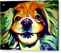 Cocker Spaniel - Cheese Acrylic Print by Alicia VanNoy Call