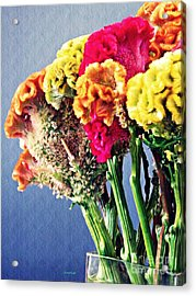 Acrylic Print featuring the photograph Cockscomb Bouquet 2 by Sarah Loft