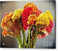 Acrylic Print featuring the photograph Cockscomb Bouquet 3 by Sarah Loft