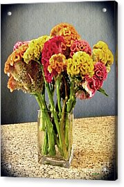 Acrylic Print featuring the photograph Cockscomb Bouquet by Sarah Loft