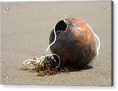 Coconut Beach Acrylic Print by Jez C Self