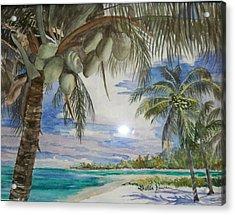 Coconut Beach Acrylic Print by Leslie Duncan