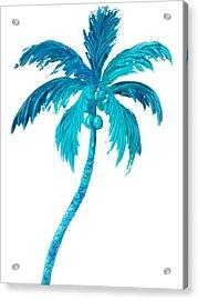 Coconut Palm Tree Acrylic Print by Jan Matson