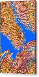 Coconut Palms In Red And Blue Acrylic Print