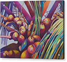 Coconuts Closeup Acrylic Print