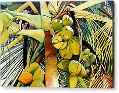 Coconuts I Acrylic Print