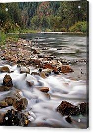 Coeur D'alene River Acrylic Print by Leland D Howard