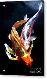 Coi Duo Acrylic Print by Jonny Bean
