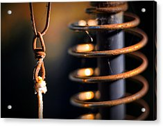 Acrylic Print featuring the photograph Coil by Tim Nichols
